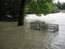 überschwemmte Müllcontainer